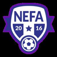 NEFA International degree programme
